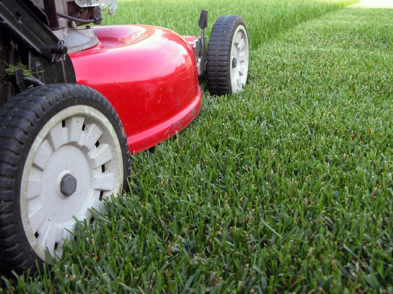 Image result for lawn care companies